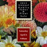 2013 Dahlia Sale