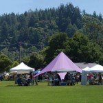 The Garden Faire spreads out on Skypark's playing fields-300