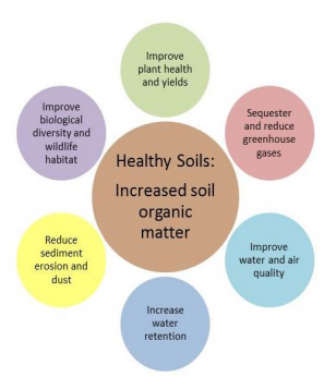 Healthy Soils Diagram